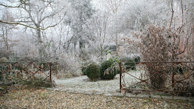 Jardines casi nevados. Ambiance Jardin