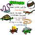 """Creature Files: Reptiles"" - a bookwrap"