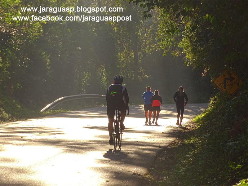 A estrada Turística do Jaraguá é a mais longa ladeira de São Paulo