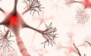 Multipl Skeleroz Hastaları Gen Terapisiyle İyileştirilebilir mi?