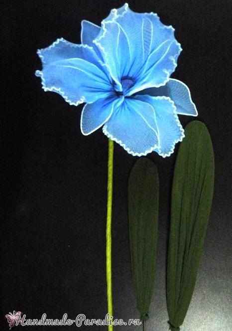 Шаблоны для создания цветов Орхидеи Каттлеи (8)