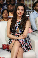 Kyra Dutta in a Deep neck Small Dress at Shamanthakamani pre release function ~  Exclusive 051.JPG