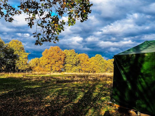 kampeerveld in de herfst