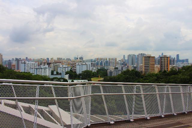 pemandangan kota dari jembatan henderson waves