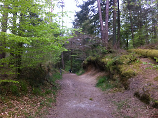 Huelgoat forest, Brittany