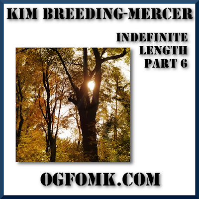 "© KIM BREEDING-MERCER / OgFOMK ArTS -- 2018 All Rights Reserved. - ""Indefinite Length, Part 6"""