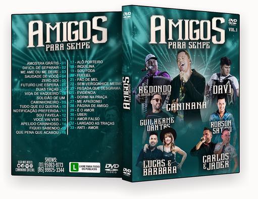 CAPA DVD – Amigos Para Sempre – ISO