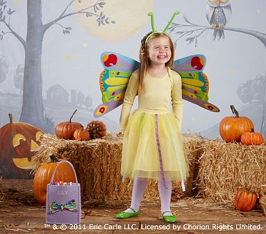 Pottery Barn Kids The Very Hungry Caterpillar Butterfly