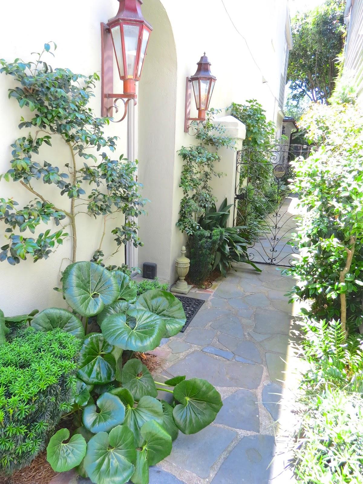 JLL DESIGN Window Box Ideas Amp More Garden Inspirations - Landscape Design Charleston Sc - Landscape Ideas