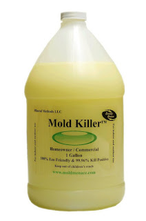 Get Rid of Mold with This