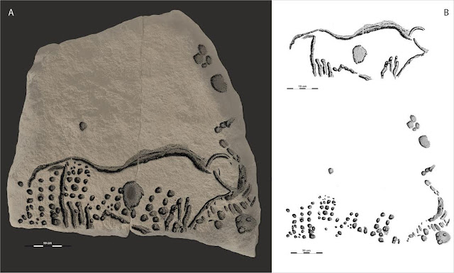 38,000 year old engravings confirm ancient origins of pointillist techniques