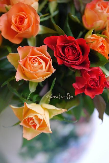#trandafiri #culoridetoamna #pastel
