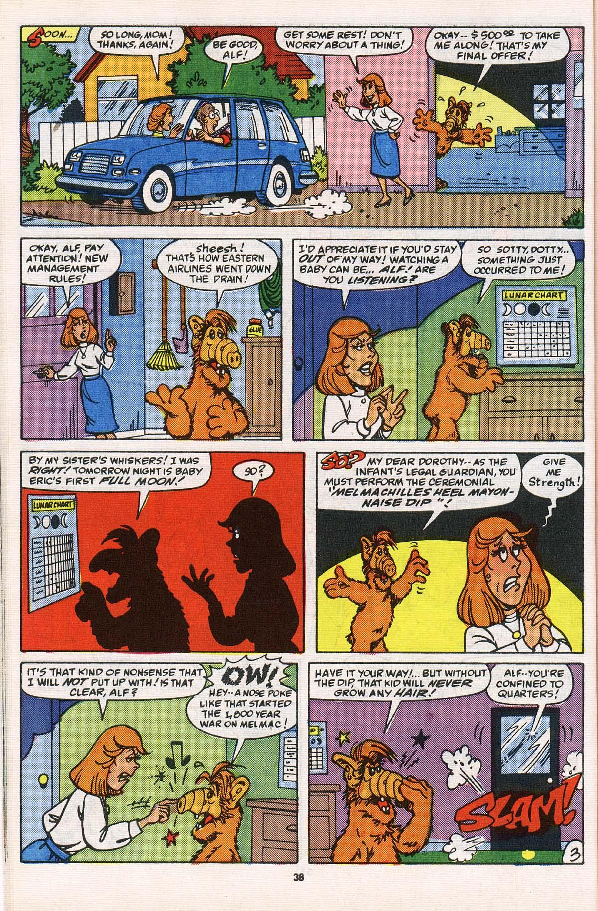 Read online ALF comic -  Issue # _Annual 2 - 35