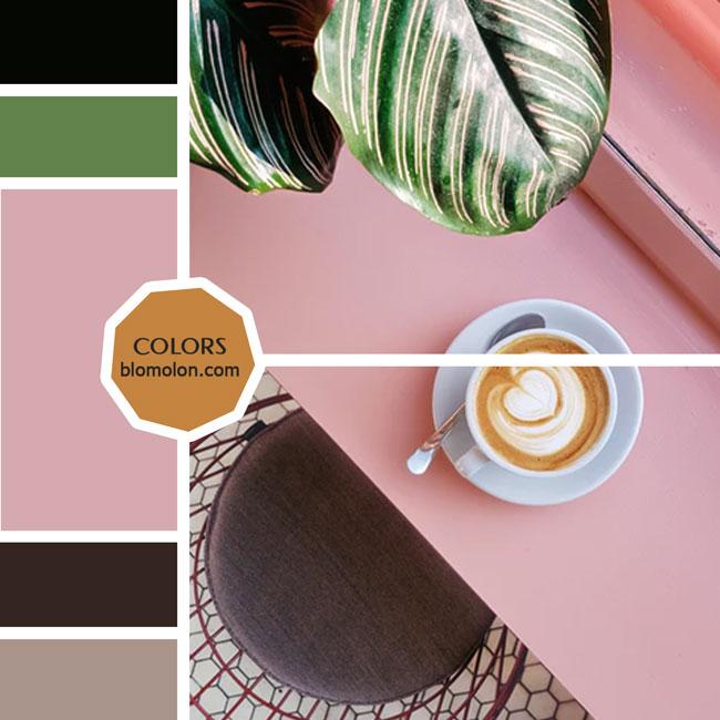 variedad_en_color_moodboard_33