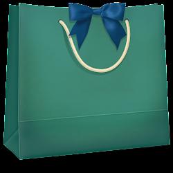 shopping bag icon icons bags picfish