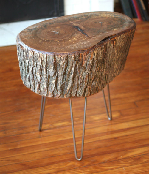 Tree Trunk Slices. Simple Rustic Round Tree Trunk Slices