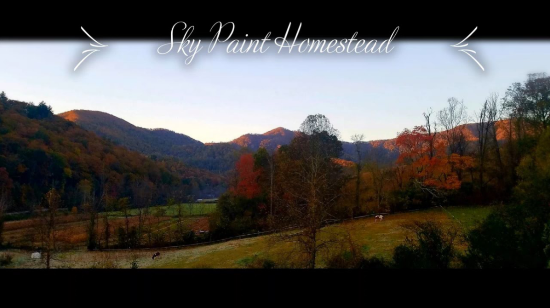 Sky Paint Homestead