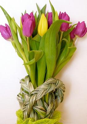 alergia primaveral como combatirla