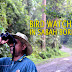 How Bird Watching in Sabah Became The Top Destination In Malaysia