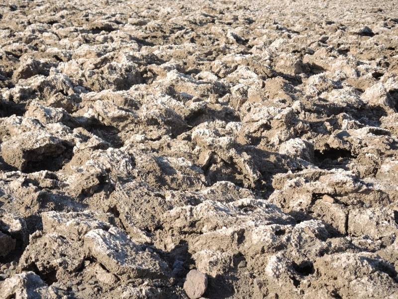 Death Valley 10