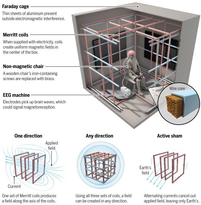 Jaula de Faraday, utilizada en los experimentos para impedir que el campo magnético de la Tierra interfiera.
