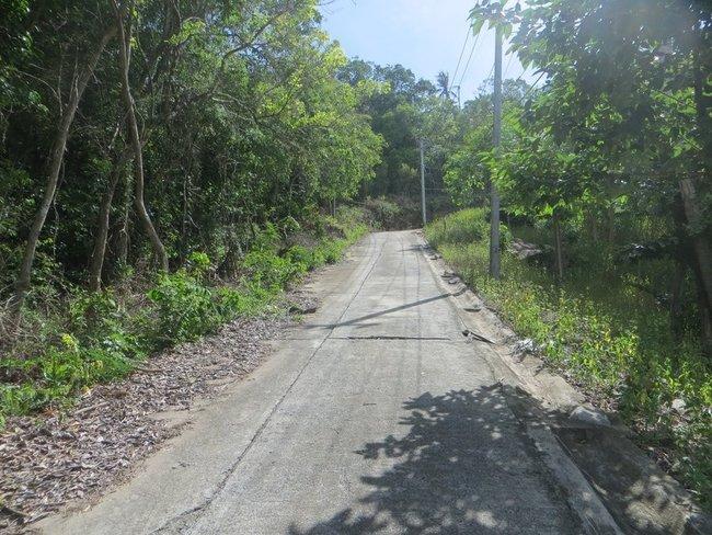 Узкая дорога в гору