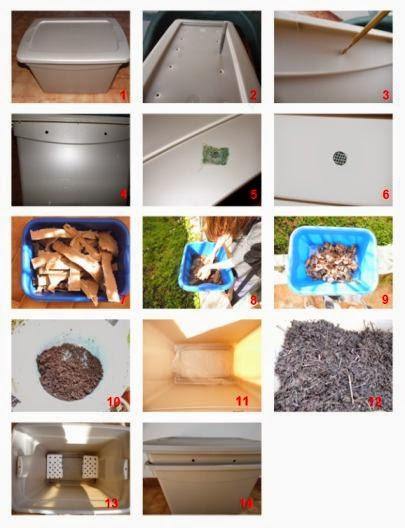 Le vite verdi costruiamo una lombricompostiera for Costruire compostiera