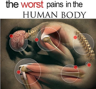Worst Pains in Human Body