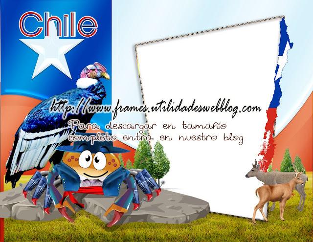Marco para fotos de cancer de bandera, escudo y tradiciones de Chile