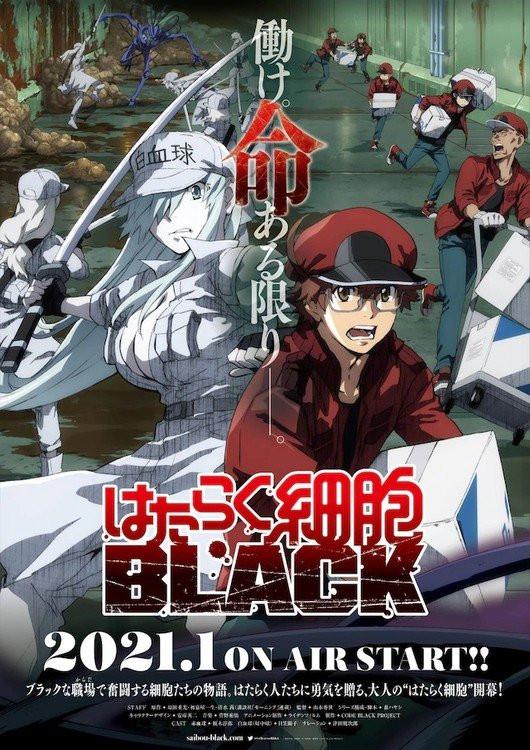 Hataraku Saibou Black - Cells at Work! Code Black (2021)
