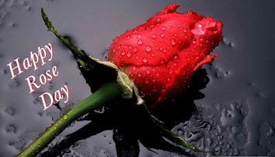 Happy Rose Day SMS in Hindi