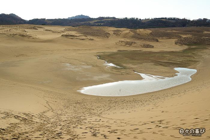 mare vue depuis le sommet des dunes
