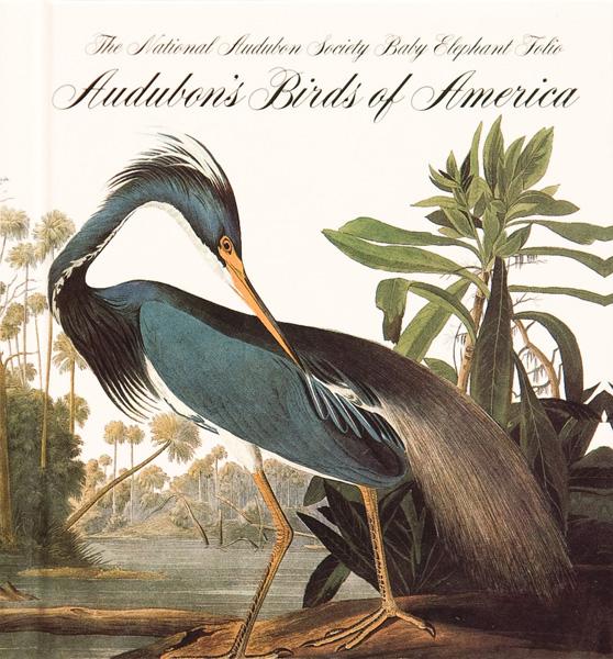 livro os pássaros da América