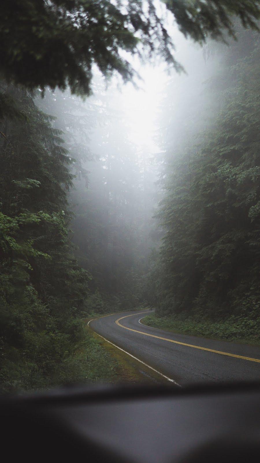 طريق هادئ مع اشعة شمس خلابة - خلفيات ايفون X