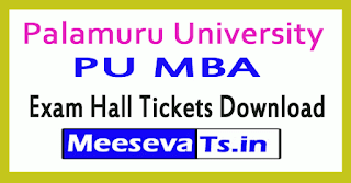 Palamuru University PU MBA Exam Hall Tickets Download