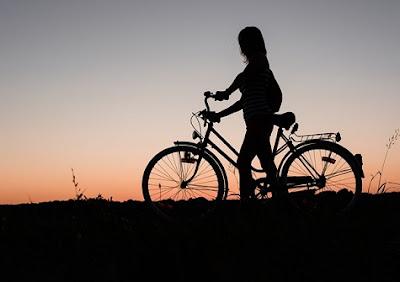 Rotoruabike bicicletas y accesorios