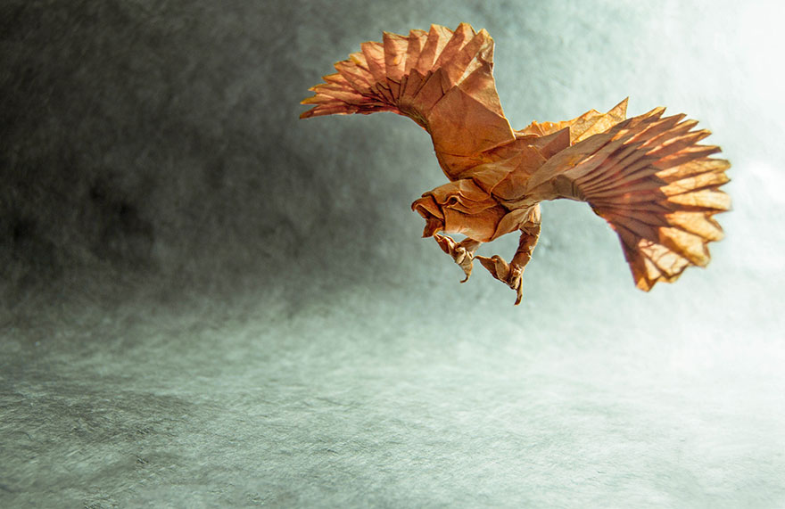 Origami Dinosaurs, a list of online, origami-dinosaur diagrams ... | 571x880