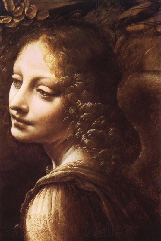 Maher Art Gallery: Leonardo da Vinci / Italian Da Vinci Paintings