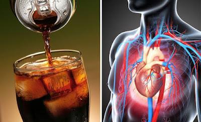 Coca Sweeteners Are Toxic To The Intestine