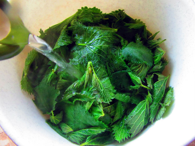 Filo pie with nettles and yoghurt by Laka kuharica: Pour boiling water over nettles