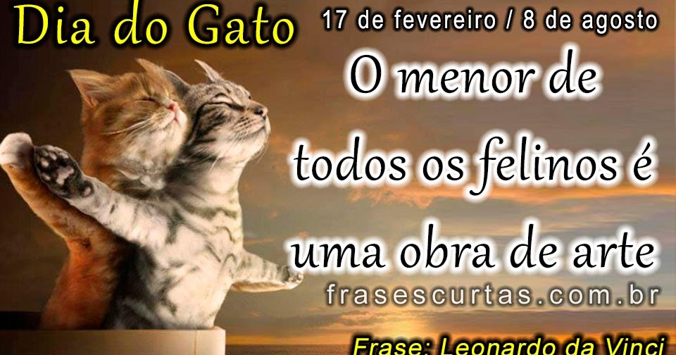 Frases Com Animais De Estimação Para Facebook: Frases Do Dia Do Gato