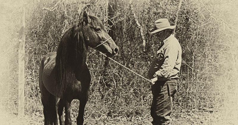 Mill Swamp Indian Horse Views: Time For A Rural Renaissance