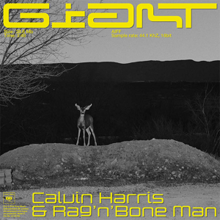 Calvin Harris with Rag'n'Bone Man - Giant