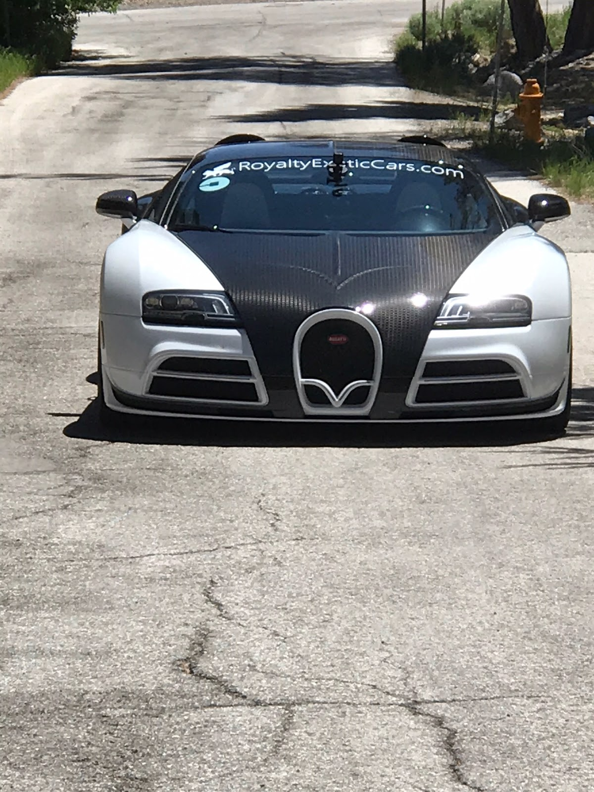 Tamerlane S Thoughts Spotted Bugatti Veyron Mansory Vivere