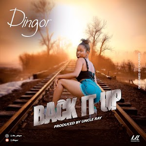 Download Audio | Dingor - Back it Up