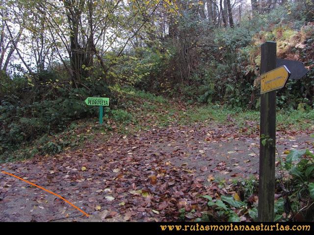 Ruta de las Xanas y Senda de Valdolayés: Cruce Pedroveya -  La Rebollá