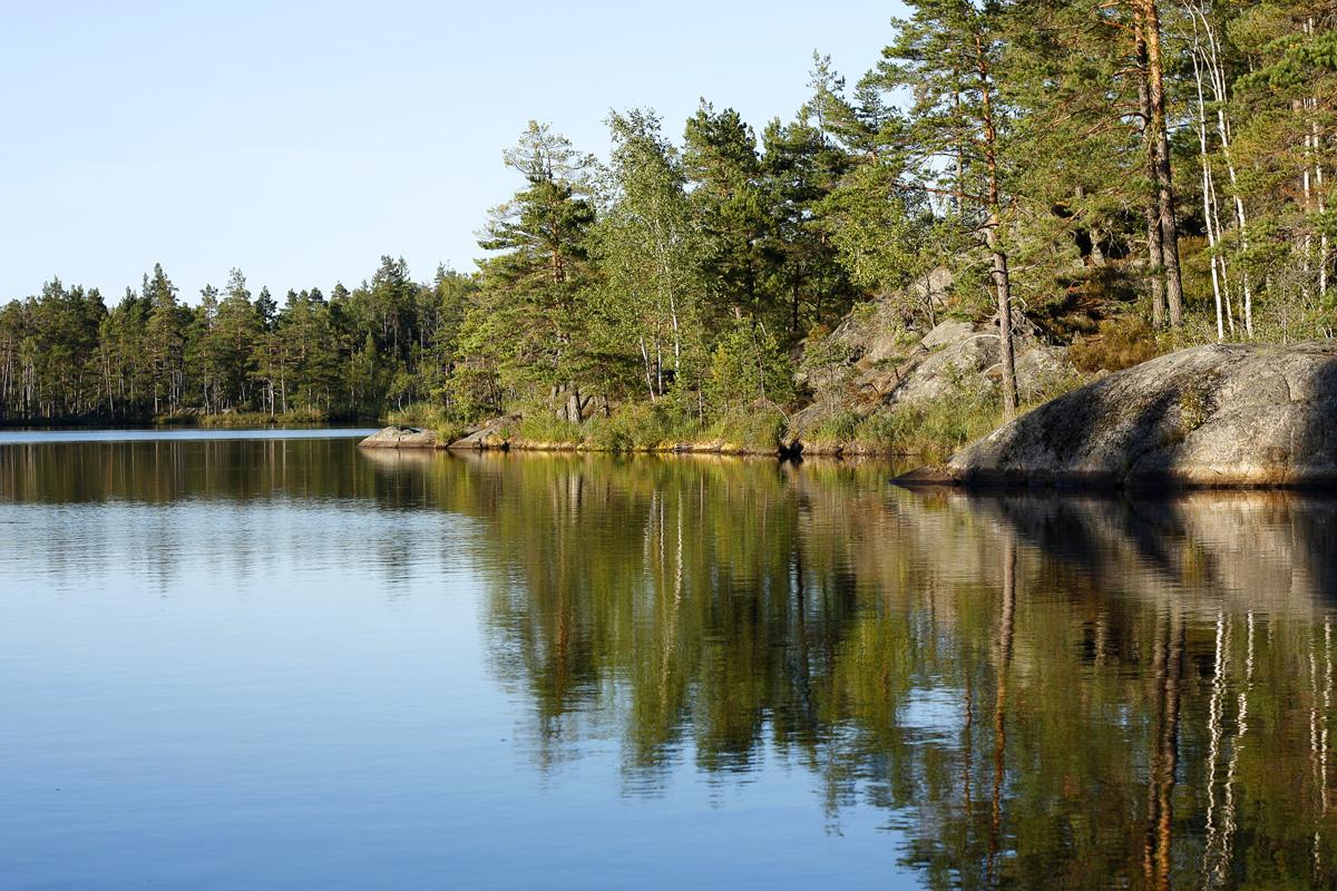Šuma, jezero i mir