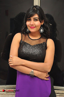 Telugu Actress Rachana Smith Stills at Money is Honey Audio Release  0001.jpg