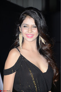 Kashish Vohra at Rogue Movie Audio Launch ~  (32).JPG