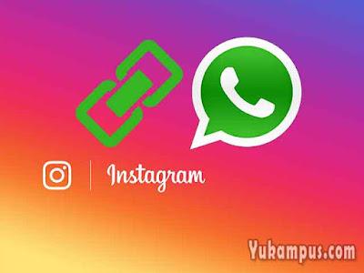 cara membuat link whatsapp instagram